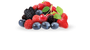 Berry Direct